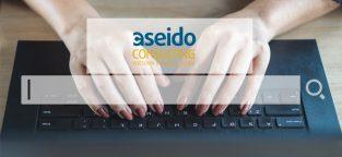 Aseido Consulting