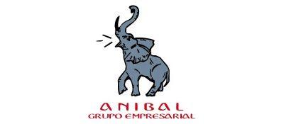 Anibal Grupo Empresarial